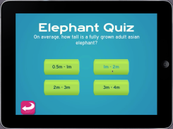 Mini Zoo - Quiz